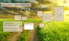 The Scarlet Ibis Characterization
