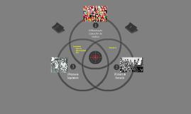 Copy of Ciclo de Vida del Adulto