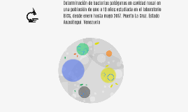 Determinación de bacterias patógenas en cavidad nasal en una