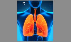 Ademhalingsfrequentie volgens VMS