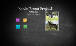 Horse Breed Project