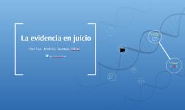Evidencias en el Proceso Penal Latinoamericano