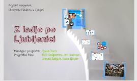 projektni management