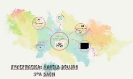 Copia de synesthesia: Ángela bellido 2ºa bach