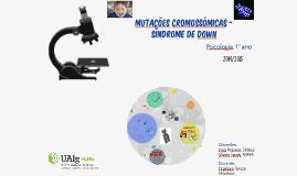 Mutações cromossómicas - Síndrome de Down