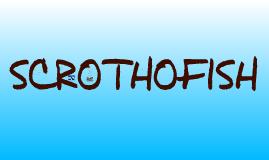 Scrothofish