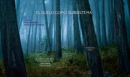 Copy of EL SUELO COMO SUBSISTEMA