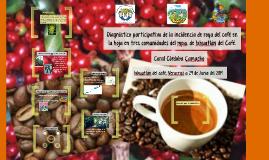 Diagnóstico participativo de la incidencia de la roya del café en la hoja