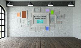 PROGRAMA DE ENFERMERÍA-Asignación Académica 2017-1