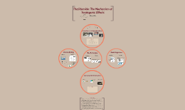 Thalidomide:Teratogen