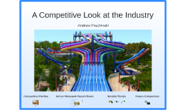 A Competitive Look at the Industry