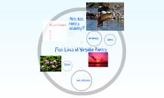 Fish Kills in Virginia Rivers