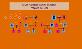 Taylor Family Pedigree