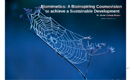 Biomimetics: A Bioinspiring Cosmovision to achieve a Sustainable Development