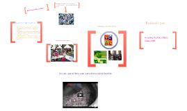 proyecto ecológico de la escuela