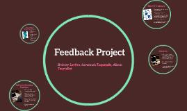 Feedback Project