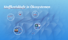 Copy of Stoffkreisläufe in Ökosystemen