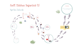 Copy of Soft Tissues Injuries Powerpoint