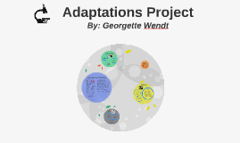 Adaptation project