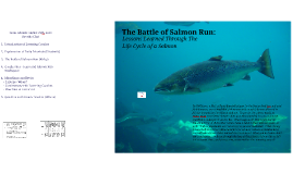 The Battle of Salmon Run