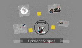 Copy of Opération Sangaris