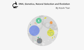 DNA, Genetics, Natural Selection and Evolution