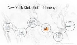 New York State Soil