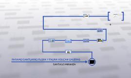 Copy of PARAMO SANTUARIO FLORA Y FAUNA VOLCAN GALERAS
