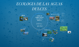 Copy of ECOLOGIA DE LAS AGUAS DULCES