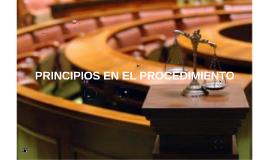 Copy of PRINCIPIOS Y GARANTIAS DEL PROCEDIMIENTO PENAL