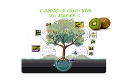 Plantation Crop: Kiwi