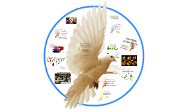 Gifts of the Spirit: Community Building; Community Empowering Tools!
