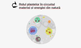 Copy of Rolul plantelor în circuitul materiei și energiei în natură