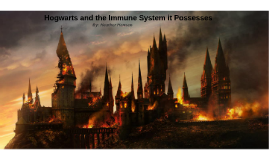 Copy of Hogwarts