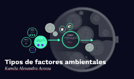 Copy of Tipos de factores ambientales