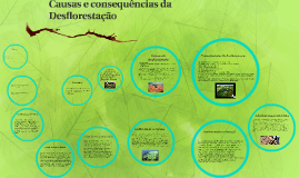 Copy of Causas e consequências da Desflorestação