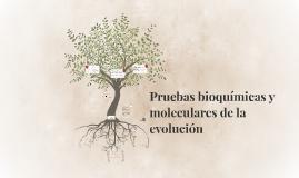 Pruebas bioquímicas y moleculares