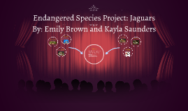 Endangered Animals Project: Jaguars