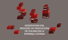DESCRIPCIÓN DEL PROCESO DE PRODUCCIÓN DE POLINES EN LA EMPRE