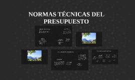 Copy of NORMAS TÉCNICAS DEL PRESUPUESTO