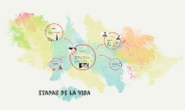 Copy of etapas de la vida