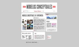 el modelo conceptual ofrece una perspectiva profesional, es