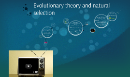 Evolution theory and natural selection