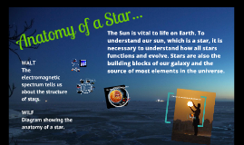 Anatomy of the Star