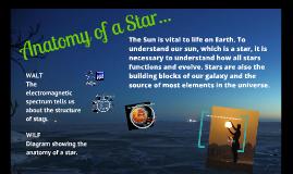 Anatomy of the Star