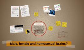 Male Vs Female brains