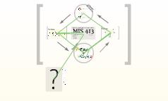 MIS 413