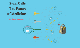 Stem Cells the Future of Medecin