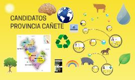 CANDIDATOS PROVINCIA CAÑETE