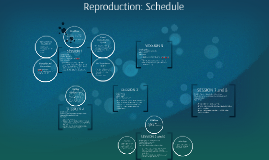 Reproduction: Schedule